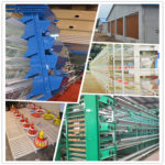Laying hens breeding automation equipment