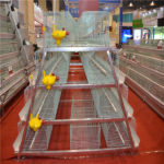 Poultry farming automated broiler cage equipment