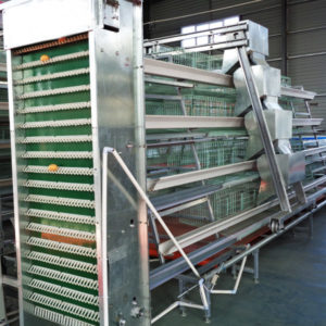 battery cage system for layers
