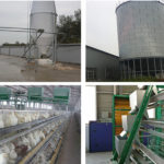 Hot Sale Poultry Farming Equipment For Sale in Pakistan